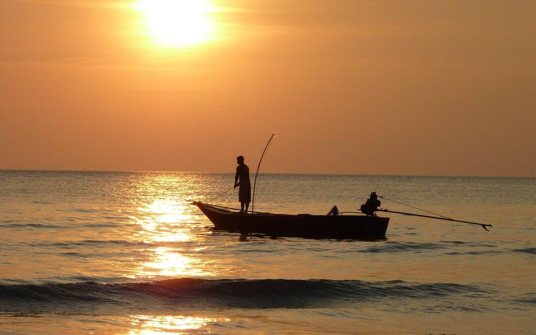 Sådan vælger du den rette fiskestang
